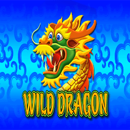 Wild Dragon logo