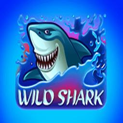 Wild Shark logo