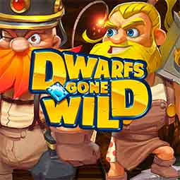 Dwarfs Gone Wild forside