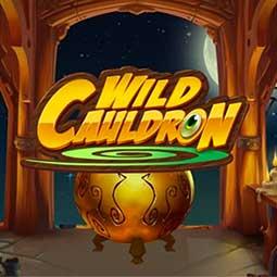 Wild Cauldron logo